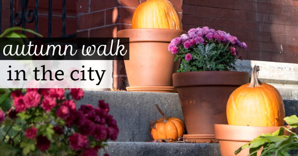 Autumn Walk in the City