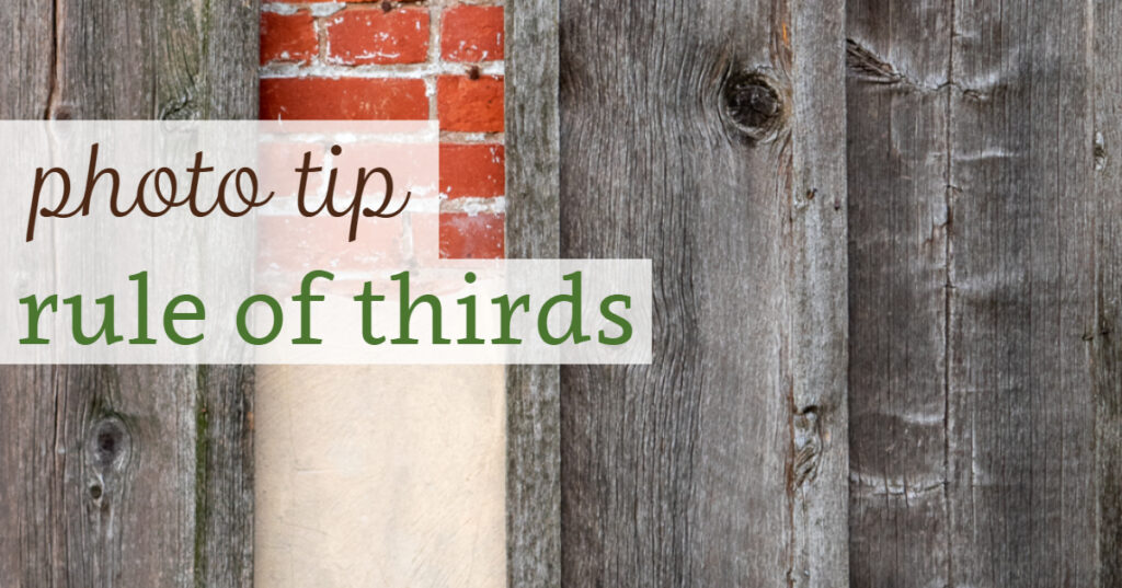 Photo tip: rule of thirds