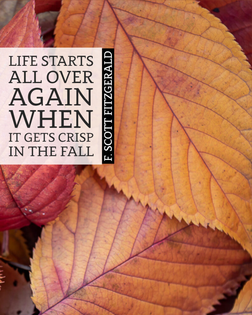 """Life starts all over again when it gets crisp in the fall."" ~F. Scott Fitzgerald"