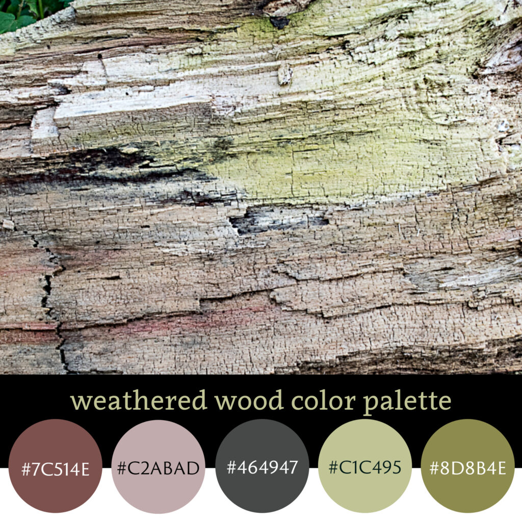 Weathered Wood Color Palette