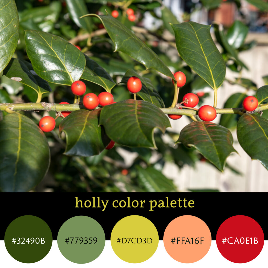 Holly Color Palette