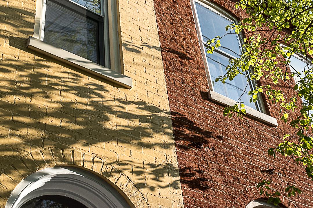 Tree shadow on brick houses