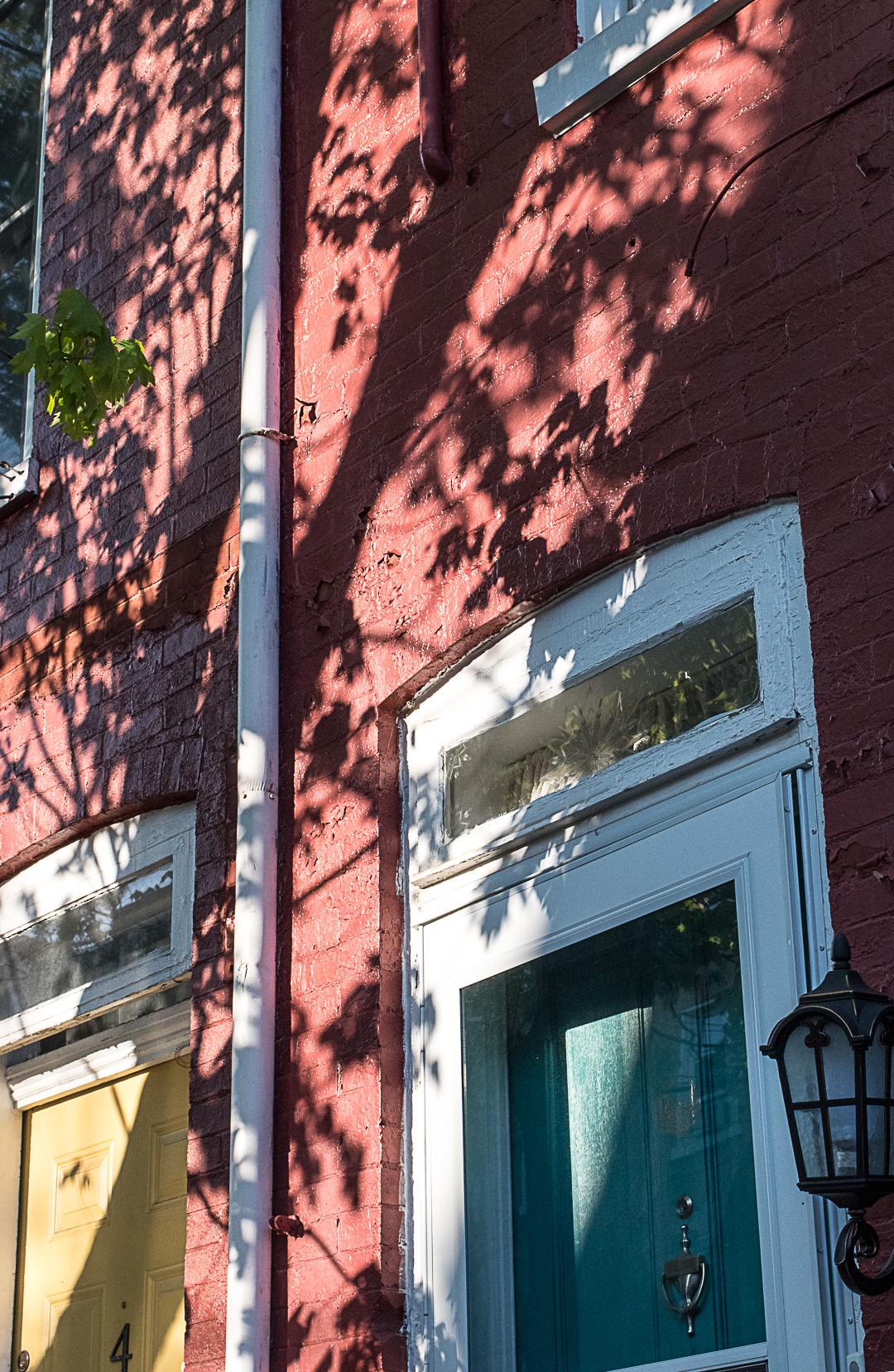 Tree shadow on  houses with colorful doors