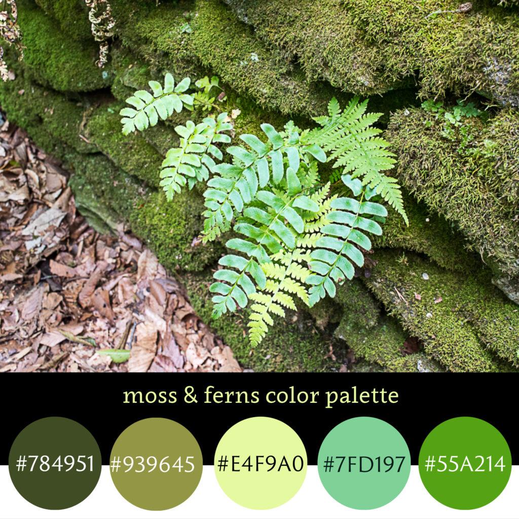 Moss & Fern Color Palette