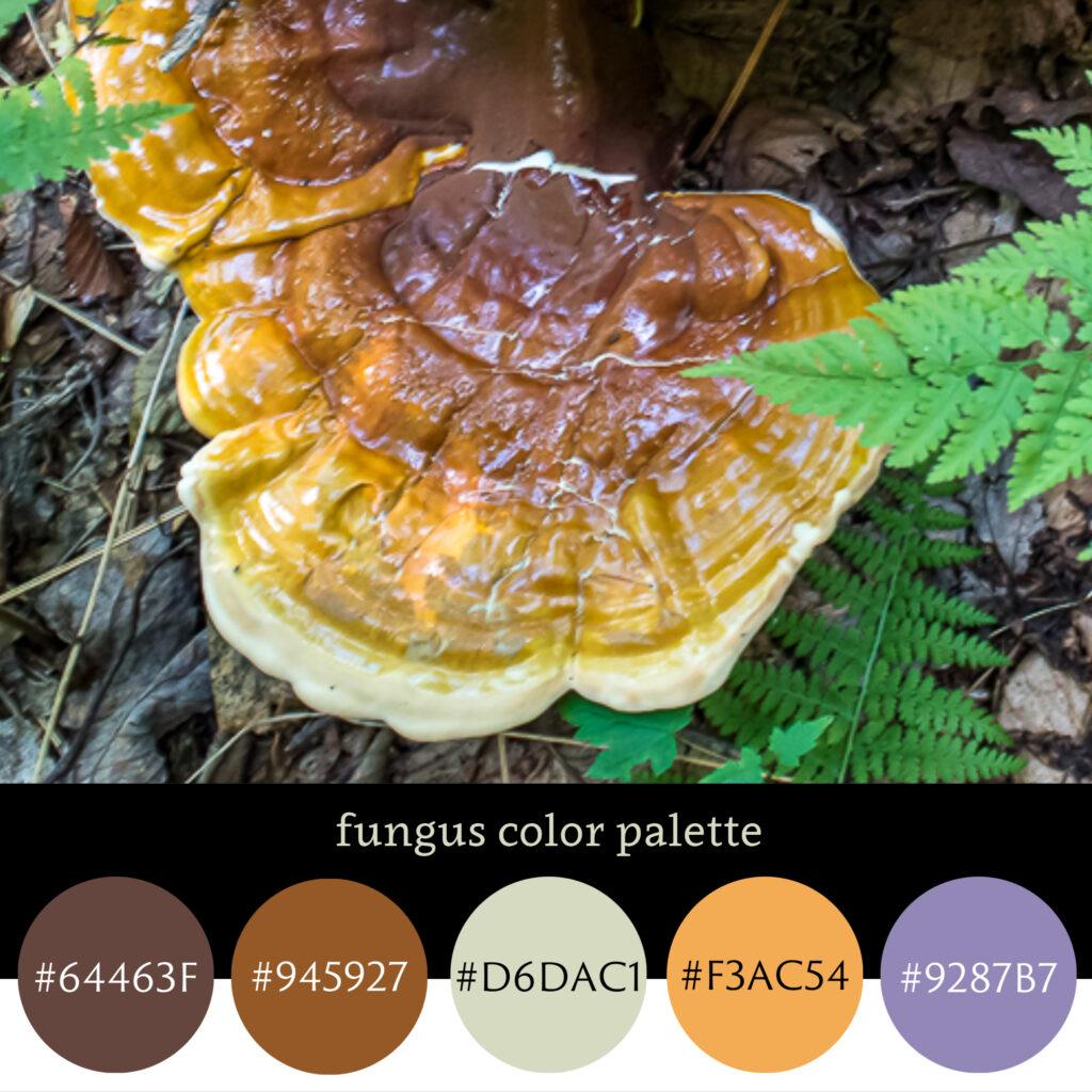 Fungus Color Palette