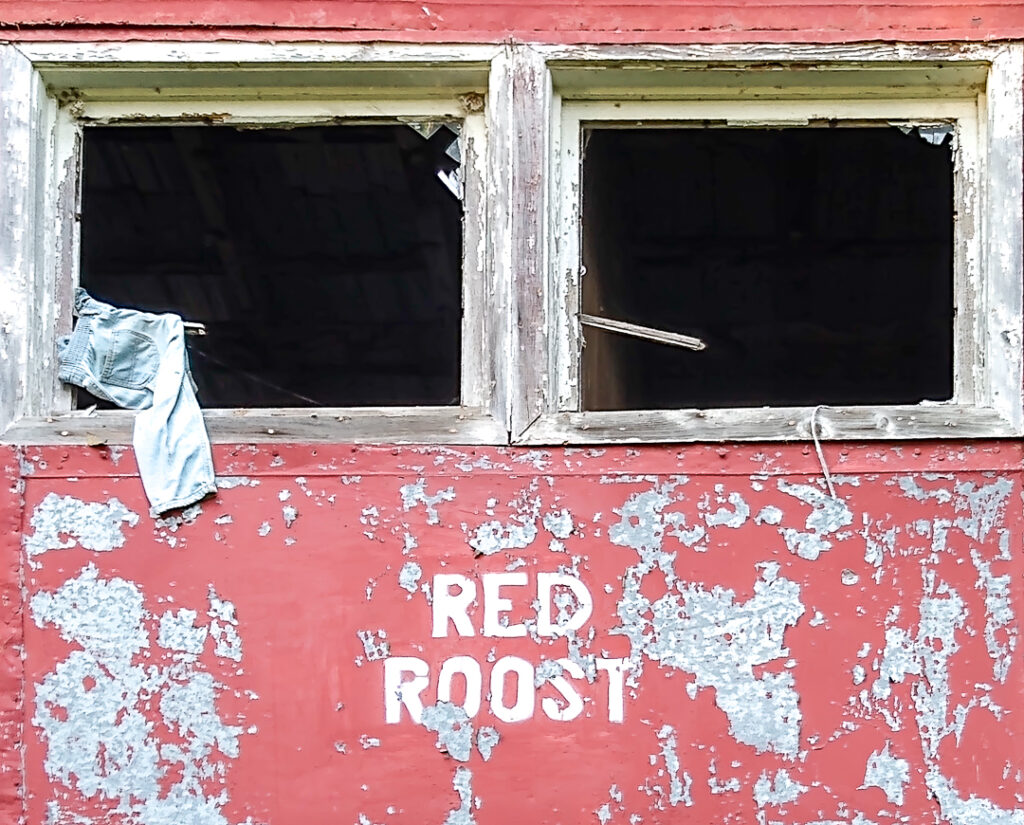 Red Roost