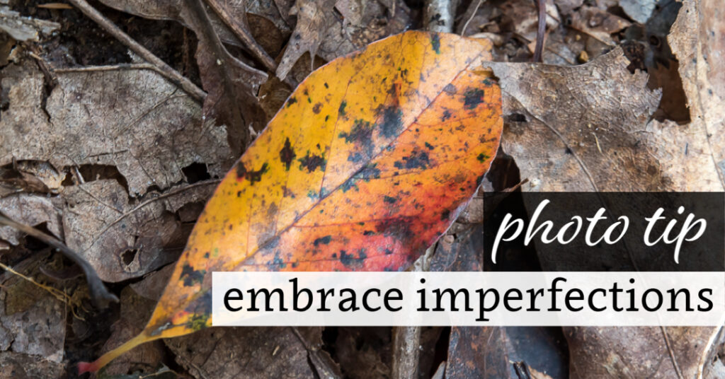 Photo Tip: Embrace Imperfections