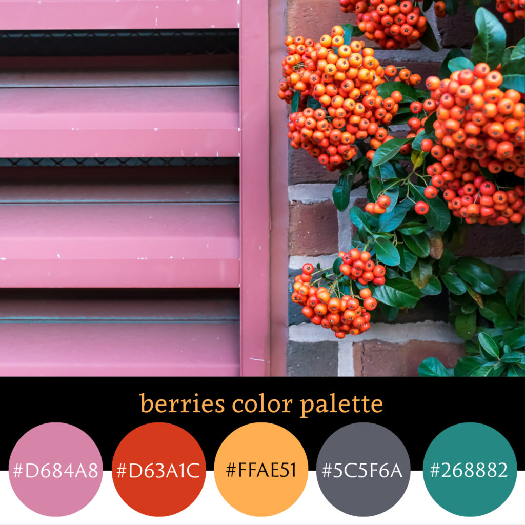 Berries Color Palette