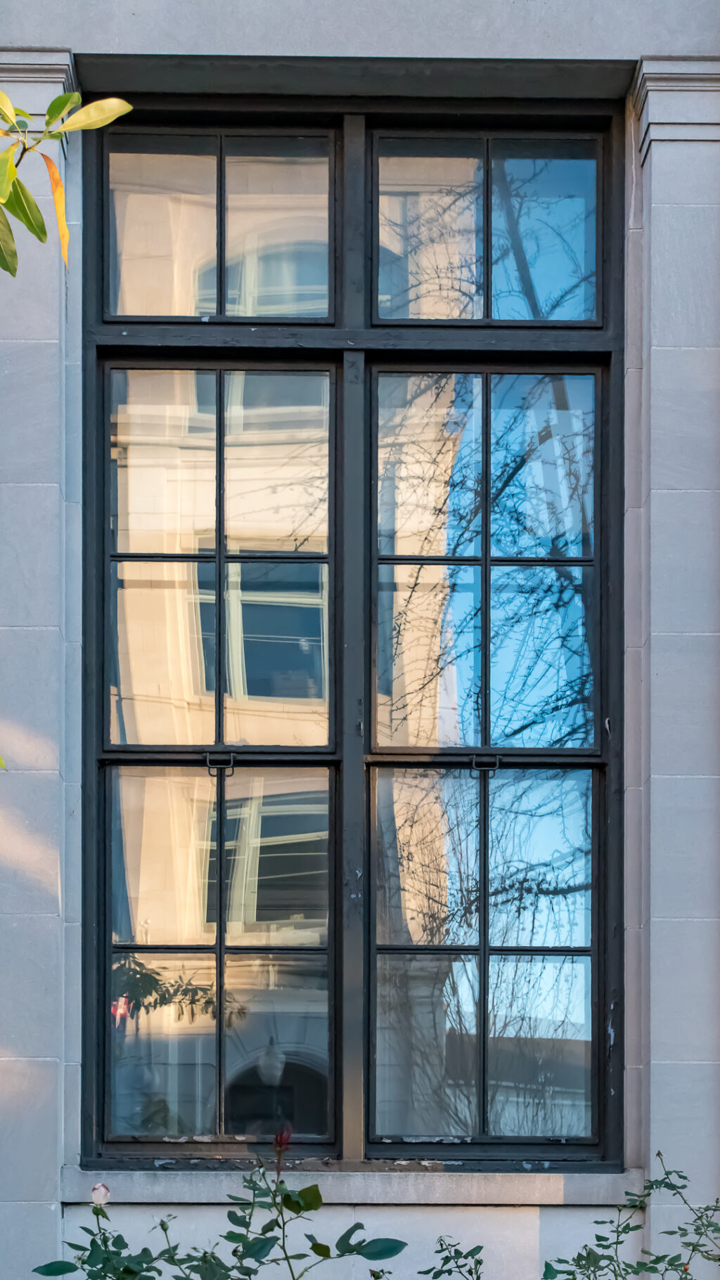 Window with reflections