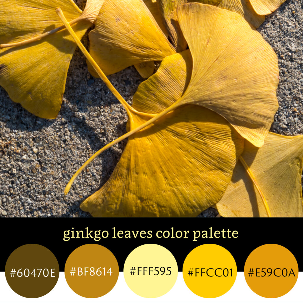 Ginkgo Leaves Color Palette