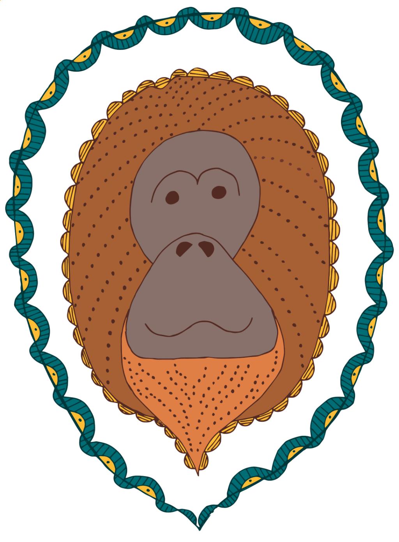 Color added to orangutan sketch