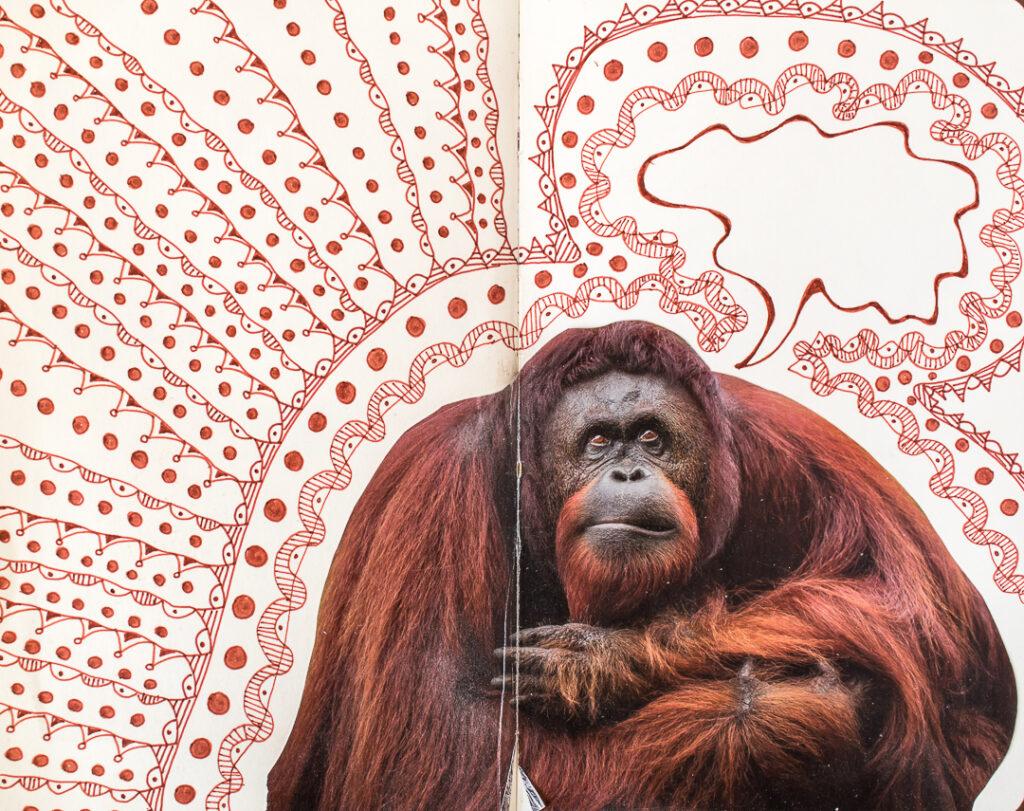 Art journal spread with photo of orangutan