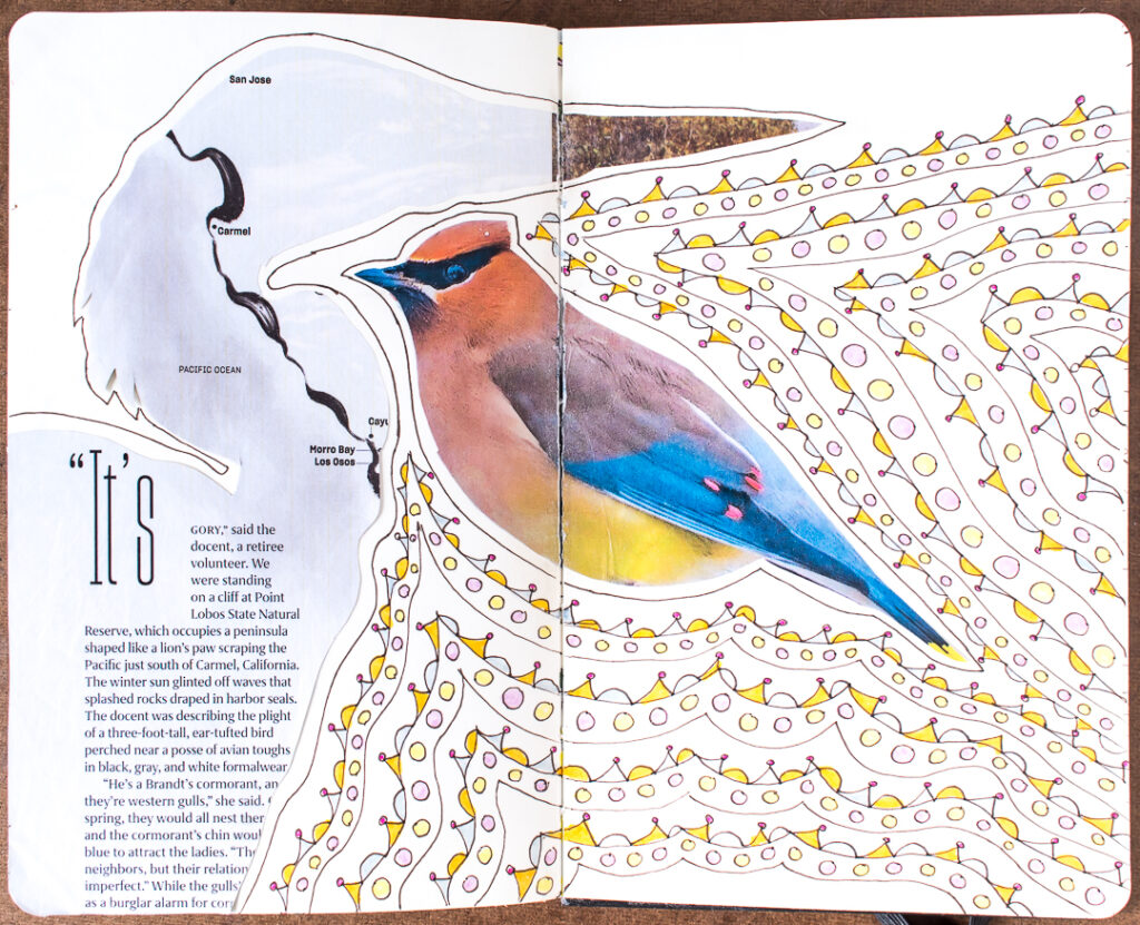 Heron & waxwing  with doodles in my art journal
