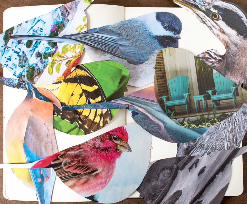 Birds and shapes cut out of magazine