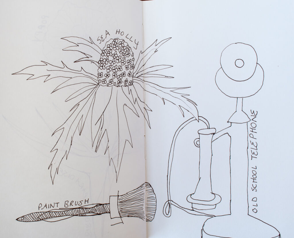 Flower and objects sketches