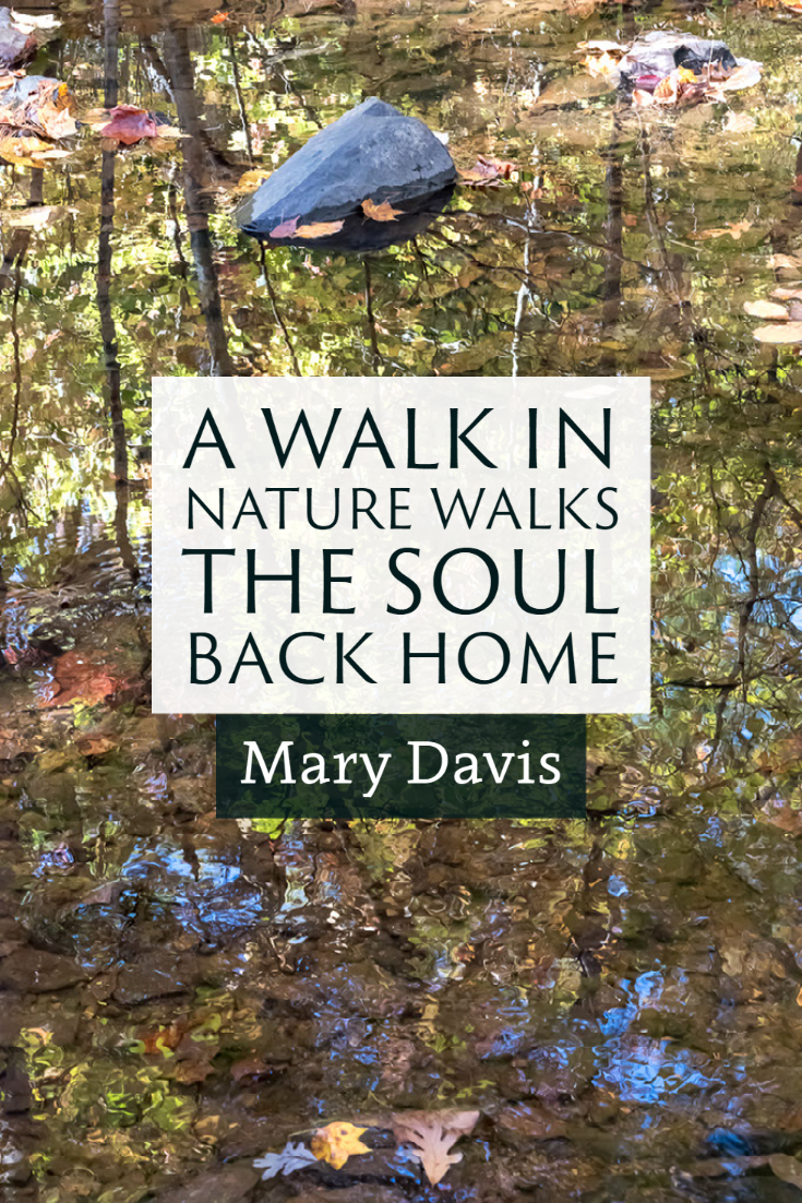 """A walk in nature walks the soul back home."" ~Mary Davis"