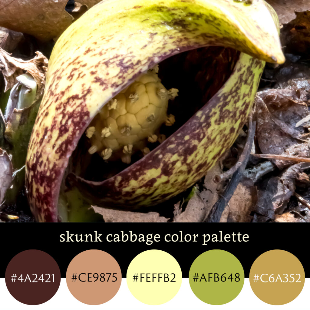 Skunk Cabbage Color Palette