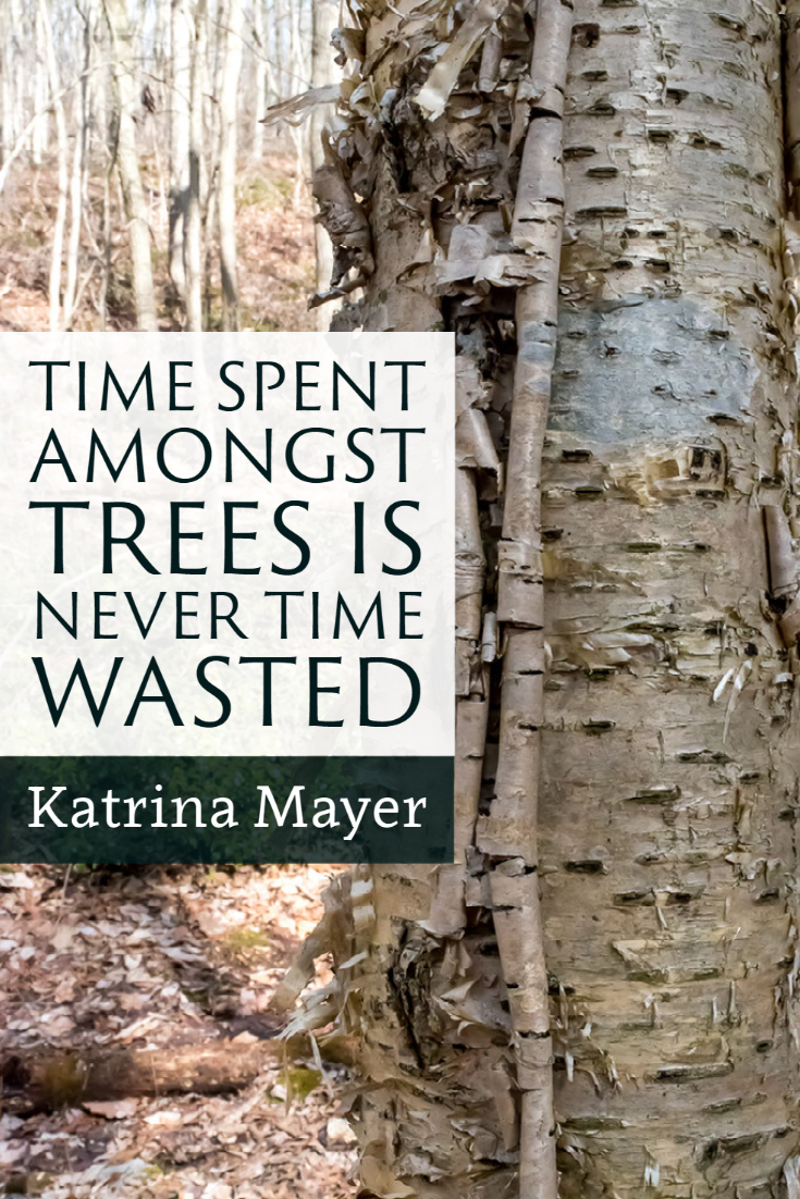 """Time spent amongst trees is never time wasted."" ~Katrina Mayer"