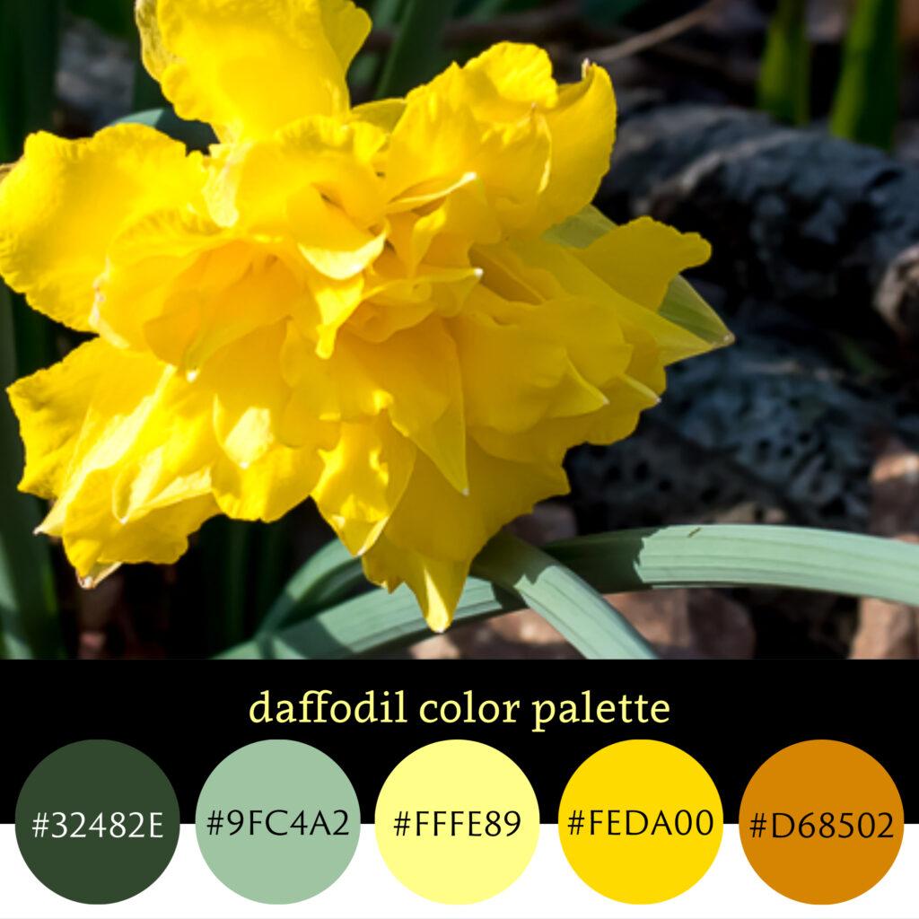 Daffodil Color Palette