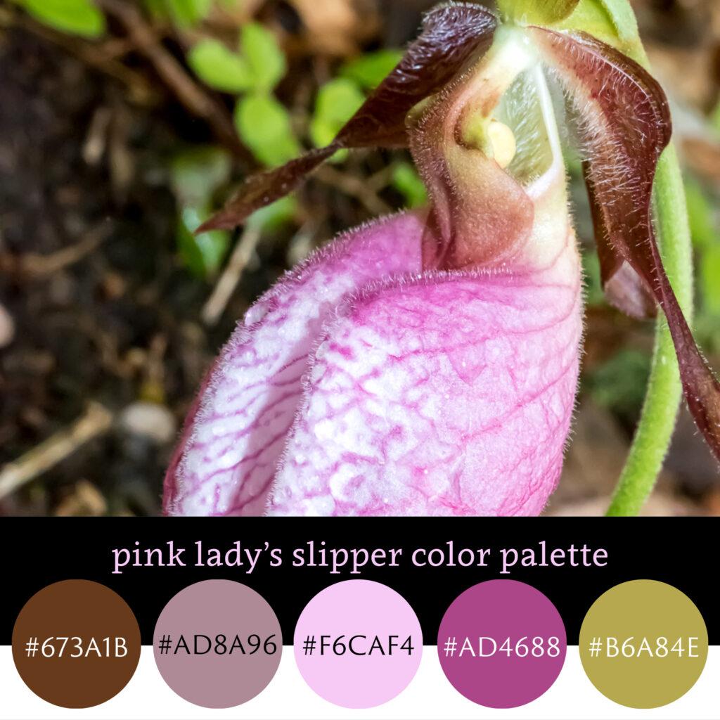 Pink Lady's Slipper Color Palette