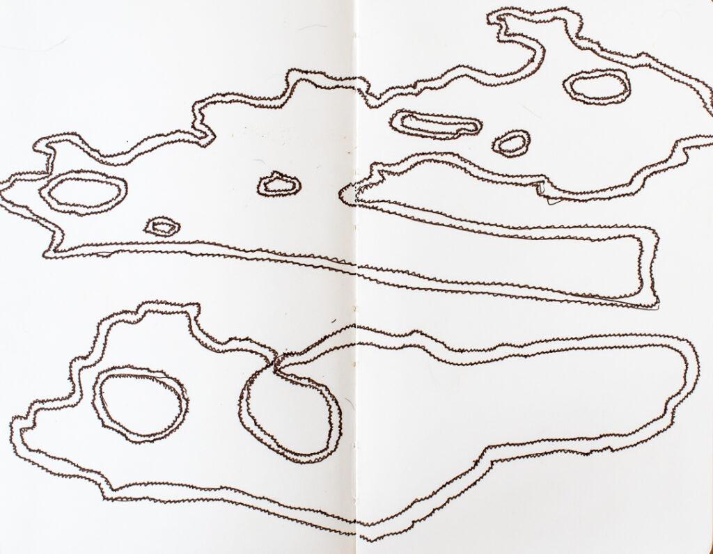 Traced sycamore bark shapes