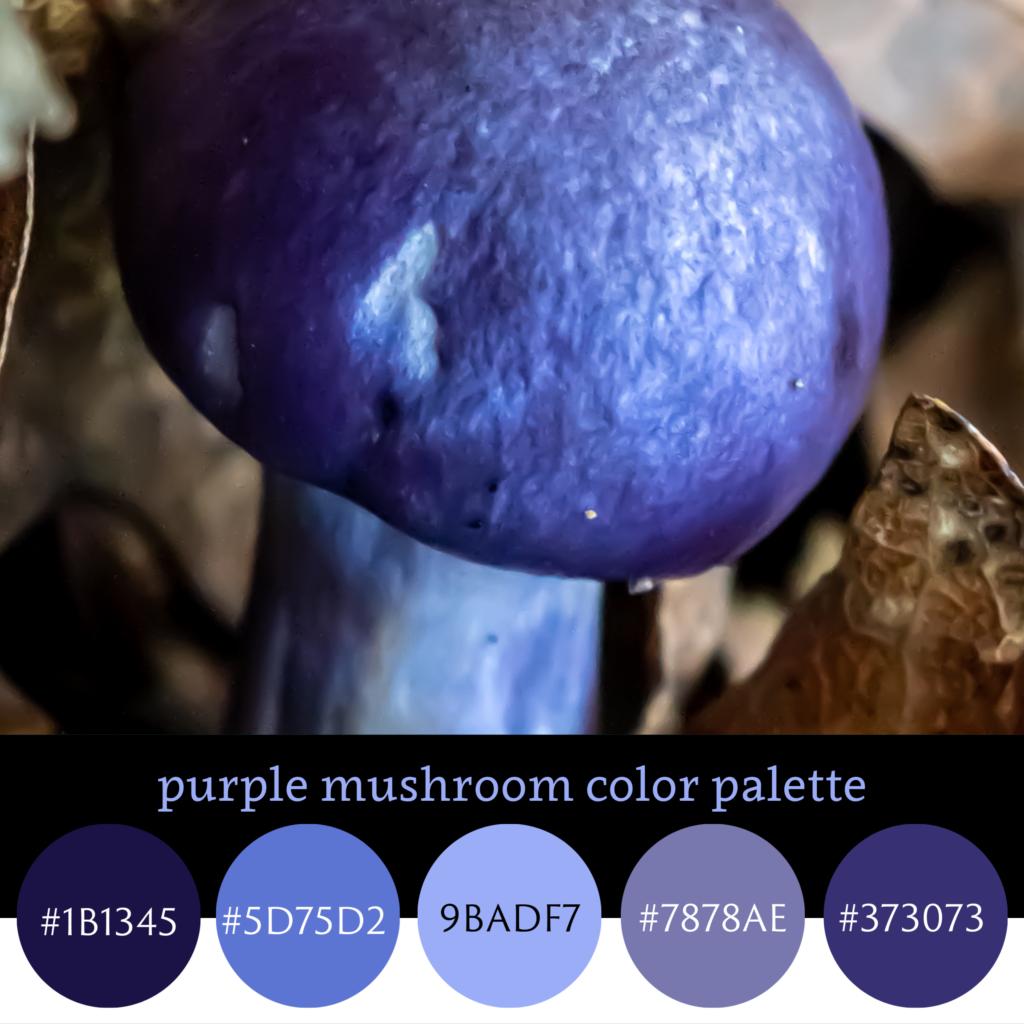 Purple Mushroom Color Palette